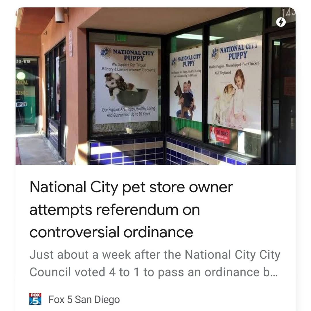 Wow Are You Kidding Me City Pets City National National City