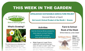 This Week In The Garden Monthly Newsletter Templates  Growing