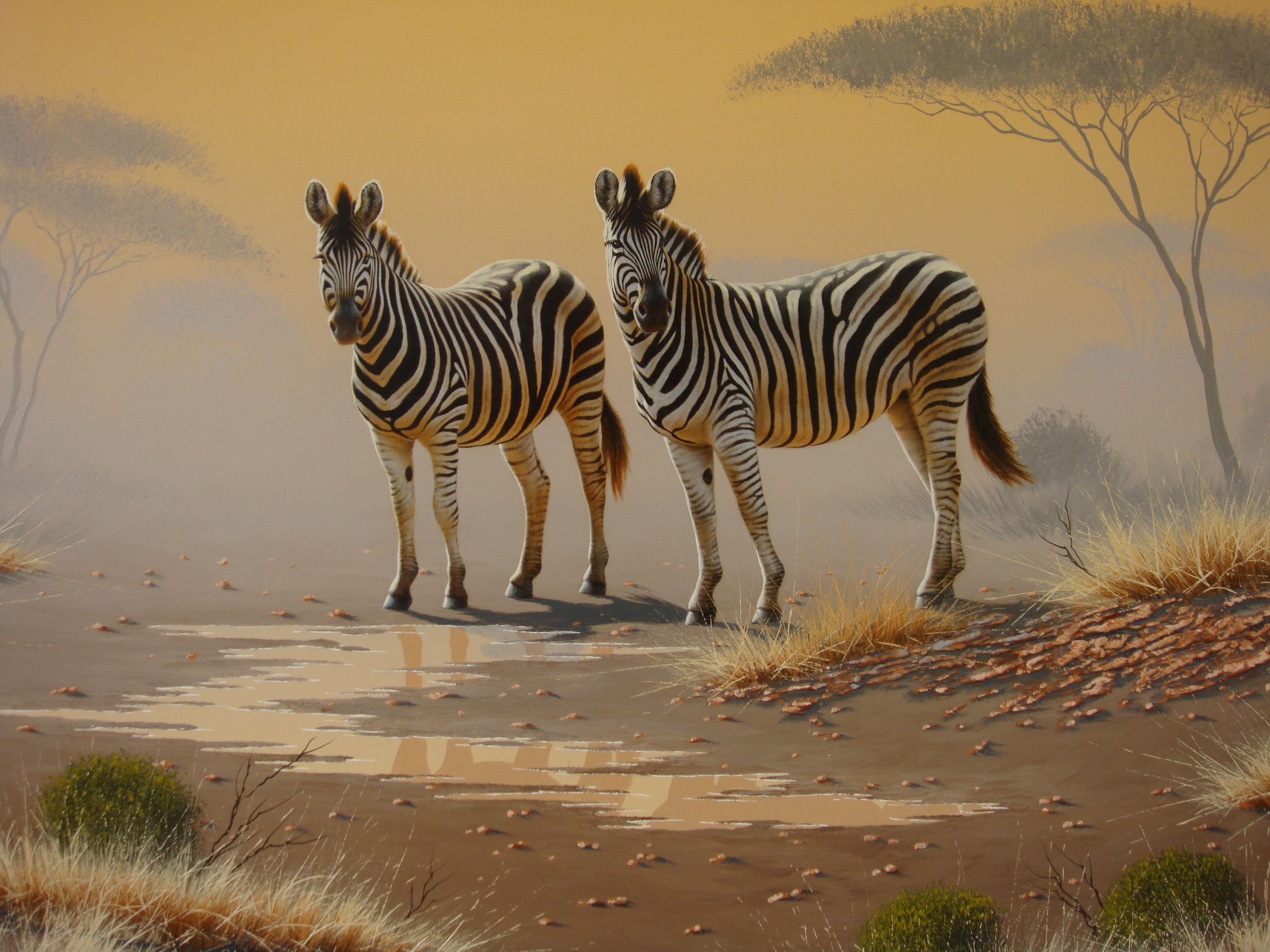 Pin Paul Samuels African Wildlife Art Paintings