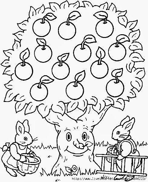 106444320 Large Apfelernte Jpg 490 600 Apple Coloring Pages Tree Coloring Page Coloring Pages
