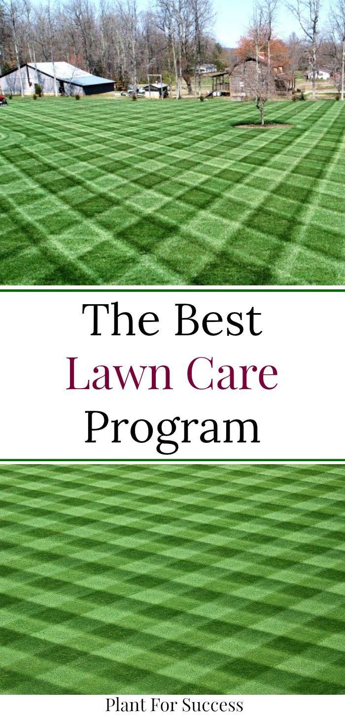 The Best Lawn Care Program