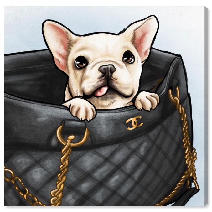 Peek A Boo Frenchie By Oliver Gal Dog Art Glam Wall Art Fashion Wall Art