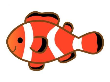 魚 イラスト カクレクマノミのイラスト イラスト無料かわいい
