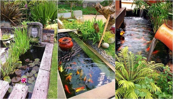 15 ไอเด ย บ อปลาขนาดเล ก แต สวยครบจบในบ อเด ยว บร ษ ท อ พ เดคคอร ประเทศไทย จำก ด การออกแบบสวน กลางแจ ง ลานบ าน