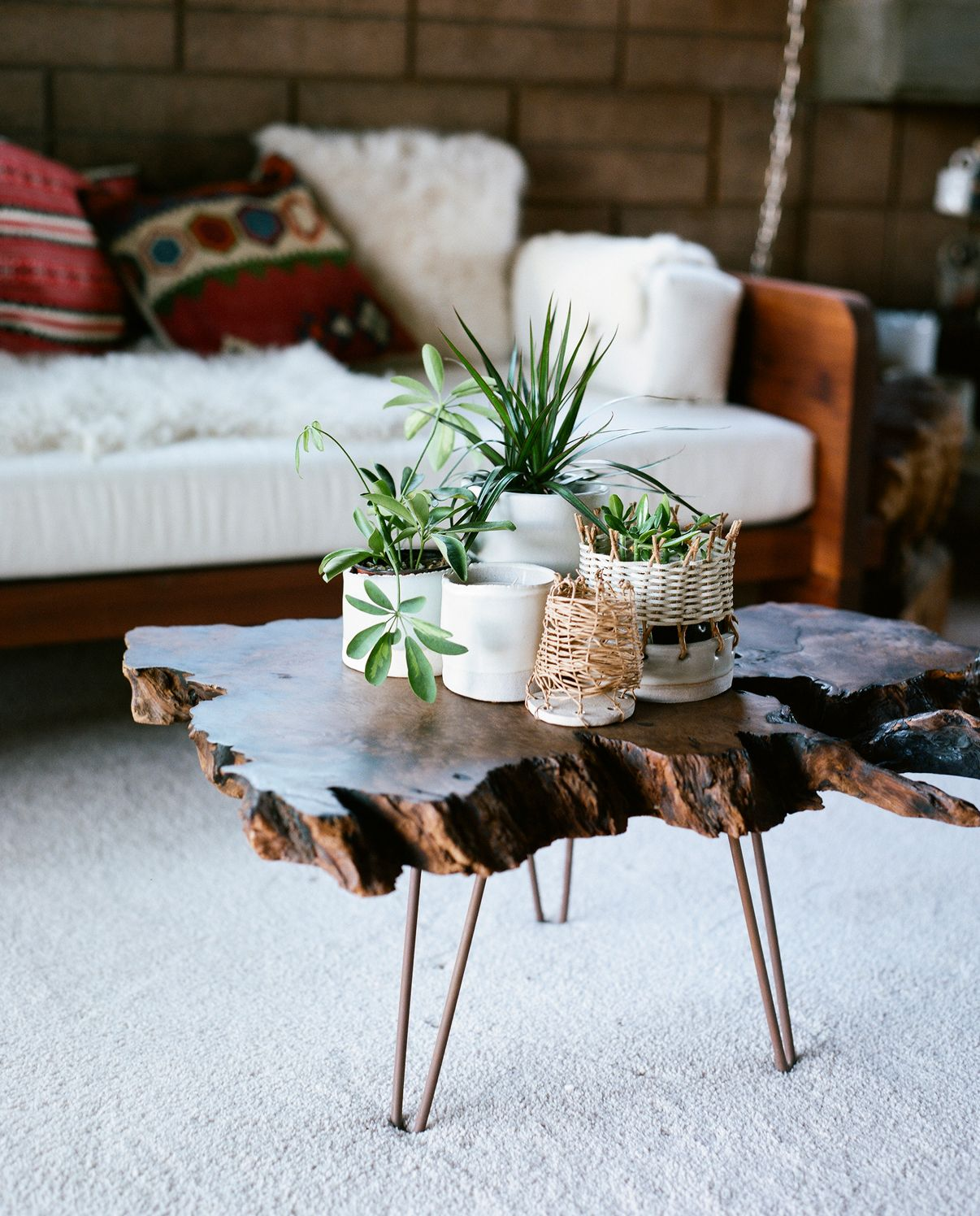 Tracy wilkinson natural wood coffee table wood coffee tables plants and natural wood coffee table geotapseo Gallery