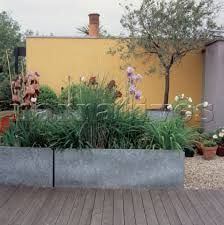 Image result for yellow painted garden walls