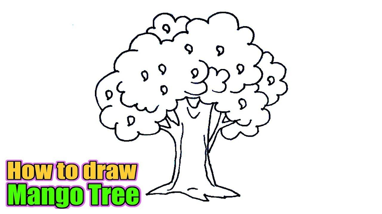 How To Draw A Mango Tree Sketch Of Mango Tree Easy Step By