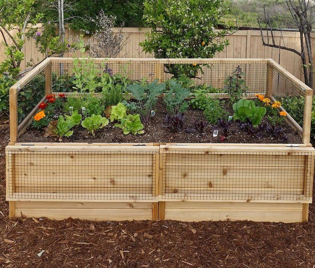 55 Diy Raised Garden Bed Plans Ideas You Can Build Diy Raised Garden Small Backyard Gardens Raised Garden Backyard garden raised bed plans