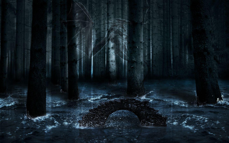 Dark Forest Wallpaper 1080p Free Download Forest Wallpaper Dark