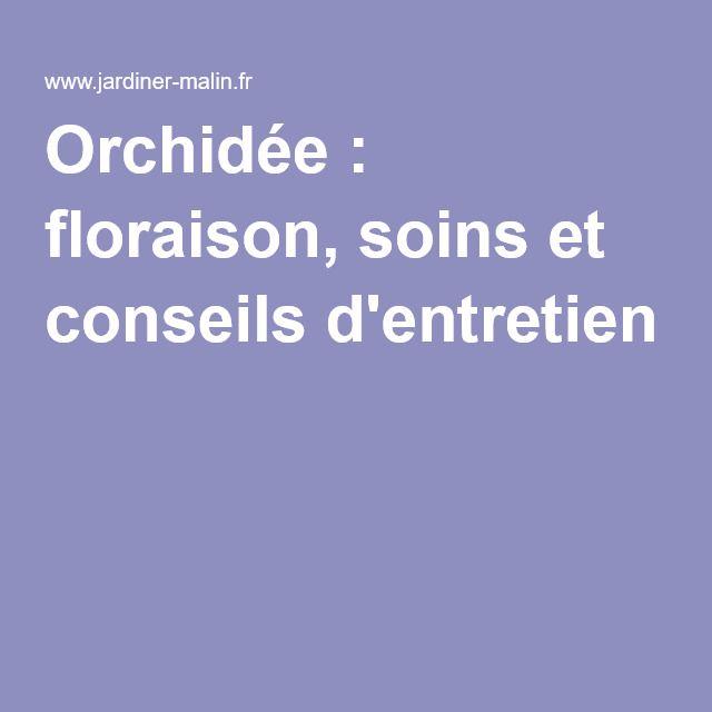 Orchid e floraison soins et conseils d 39 entretien orchid es entretien et conseils - Orchidee entretien apres floraison ...