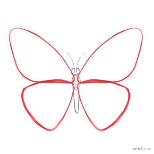 Draw a Butterfly | Libélulas, Mariposas y Plantas