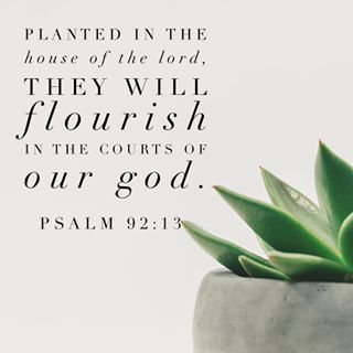 6 Powerful Scripture Verses to Start Your Day