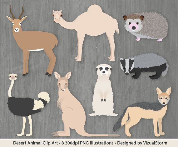 Desert Animal Illustration Set - 8 Hand Drawn Wild Animals. #antelope #camel #hedgehog #badger #ostrich #kangaroo #meerkat #jackal #desertanimals #animalclipart #wildlifeillustration #wildanimalillustration #handdrawnanimals