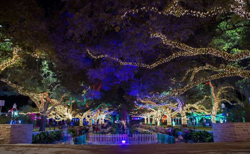 Zoo Lights Zoo Lights Explore Houston Holiday Lights