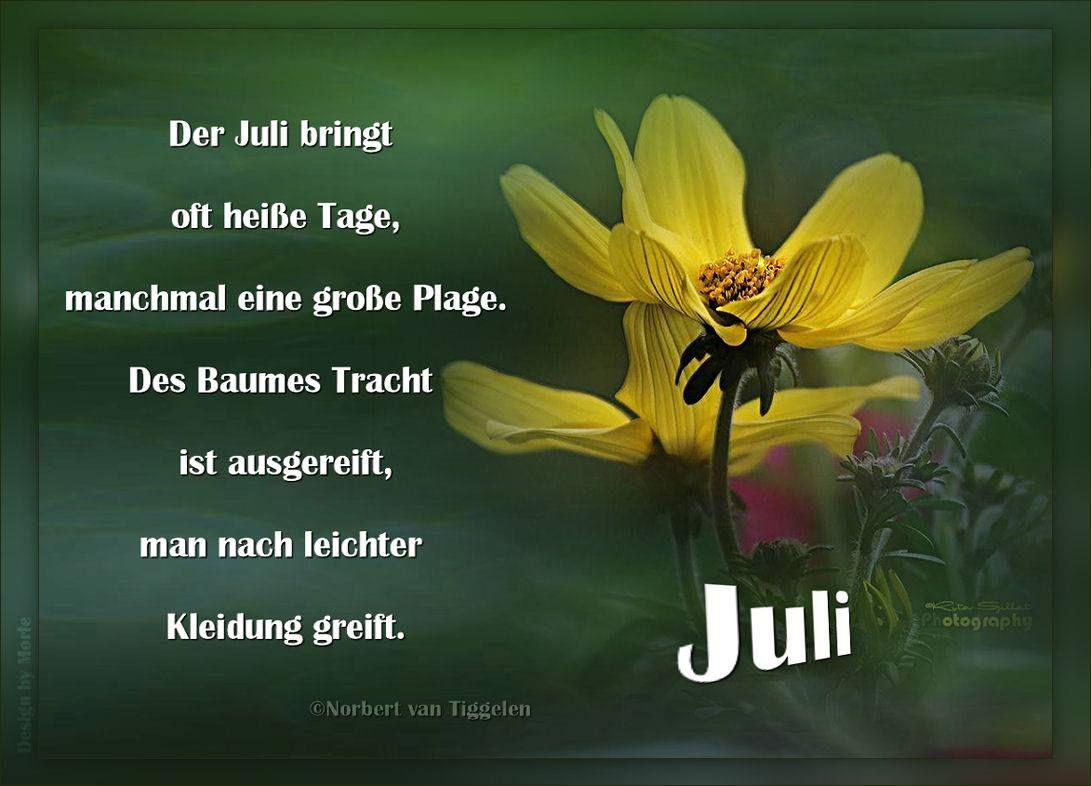 Juli Van Tiggelen Gedichte Menschen Leben Weisheit