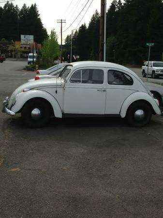 1963 Vw Beetle For Sale Vw Beetle For Sale Beetle For Sale Vw Beetles