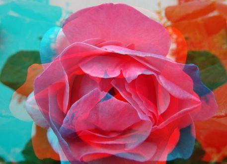 'Rosenblüte' von Marion Waschk bei artflakes.com als Poster oder Kunstdruck $16.63