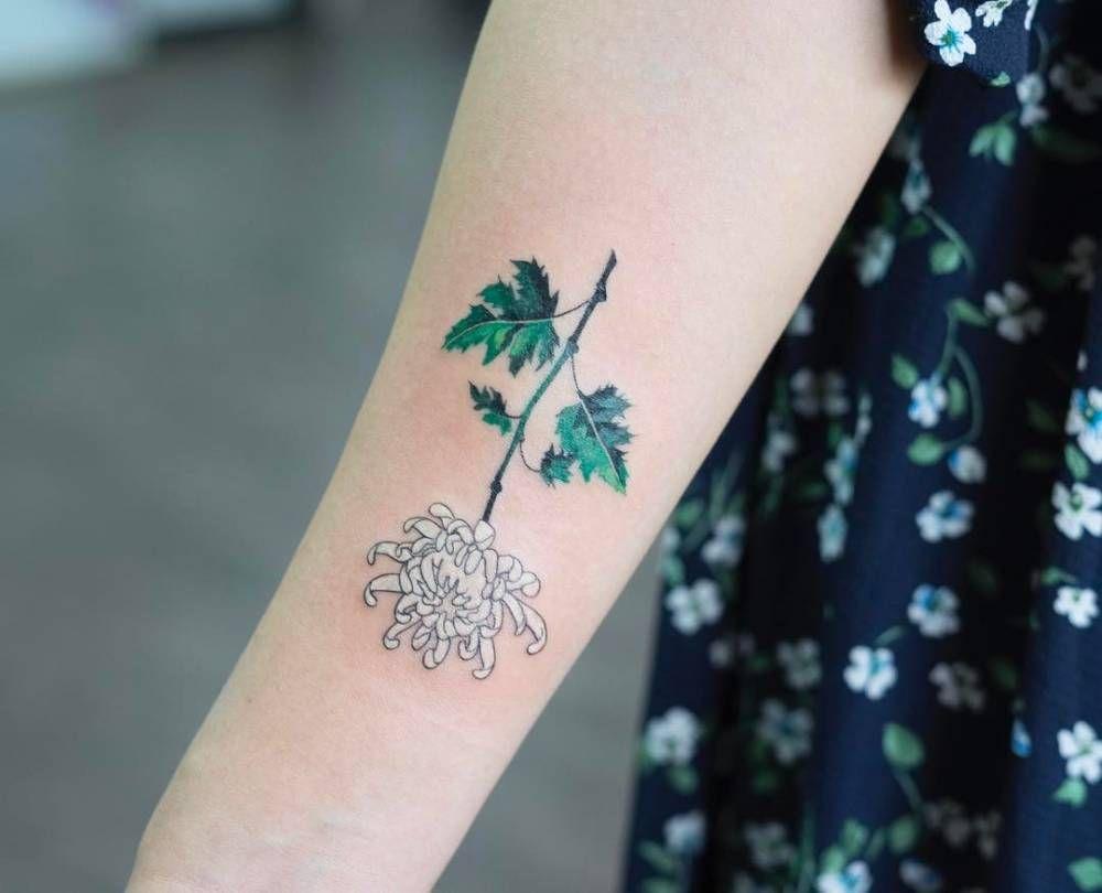 White Chrysanthemum Tattoo On The Right Inner Forearm Small Tattoos Chrysanthemum Tattoo Crysanthemum Tattoo
