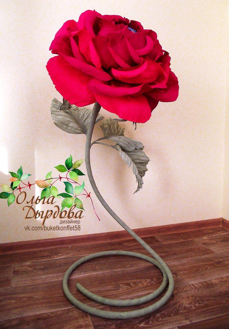 Роза для фотосессии своими руками фото 354