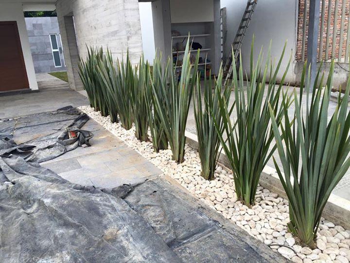 Fornios jardinera entrada pinterest jard n jardines for Decoracion de patios con macetas