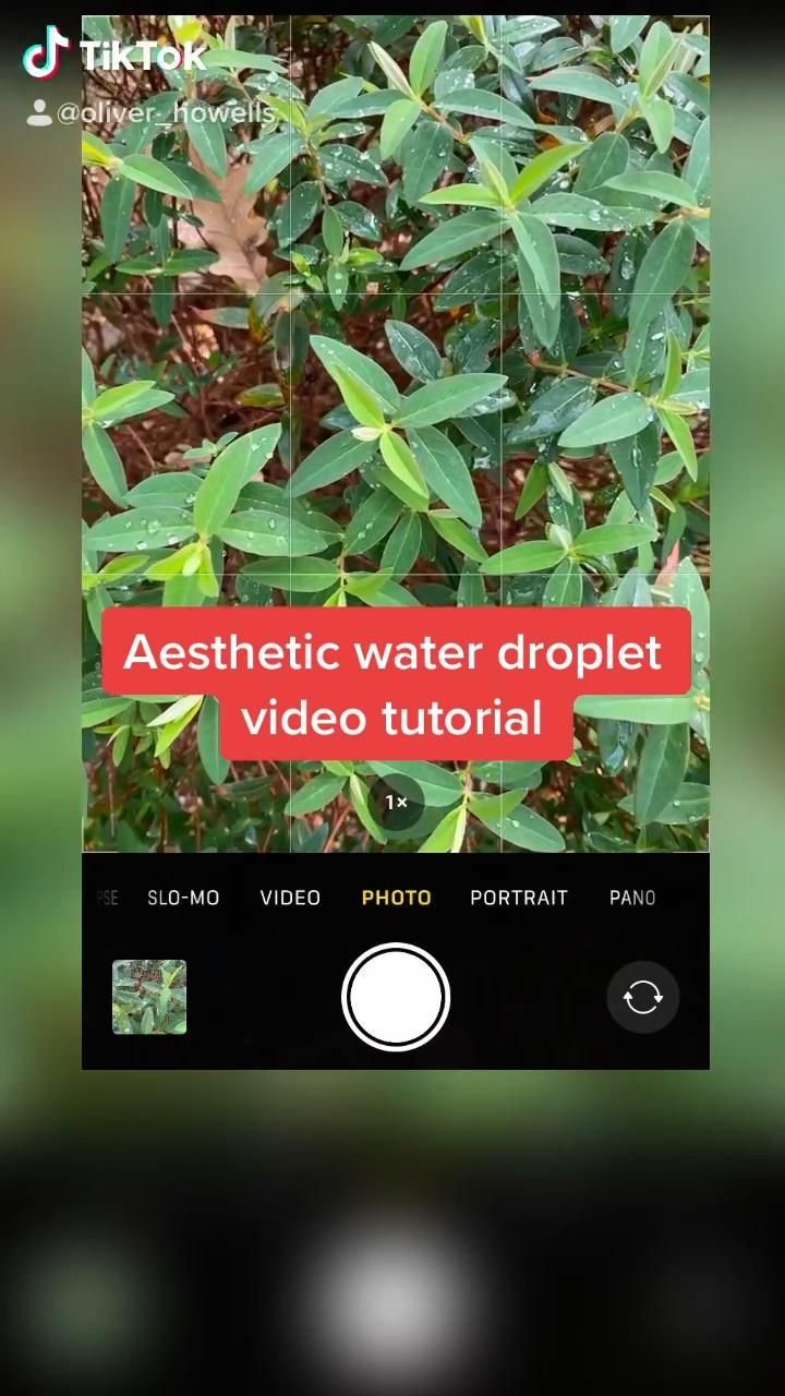Water Droplet Videography Tutorial Video Iphone Photography Photography Techniques Creative Photography