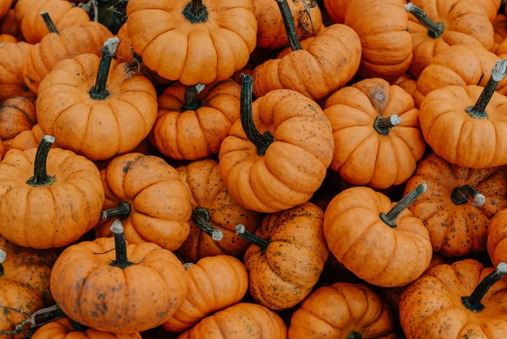 20 Beautiful And Cozy Fall Computer Backgrounds Fall Computer Backgrounds Halloween Desktop Wallpaper Desktop Wallpaper Fall