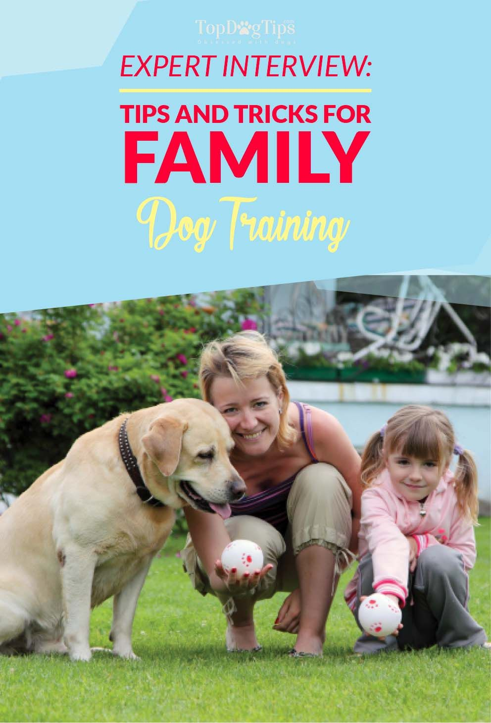 Expert Interview Important Tips And Tricks For Family Dog
