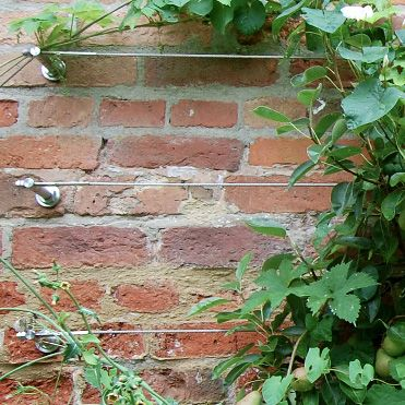 Tensioned Wire Trellis Kit Installation On Brick Wall