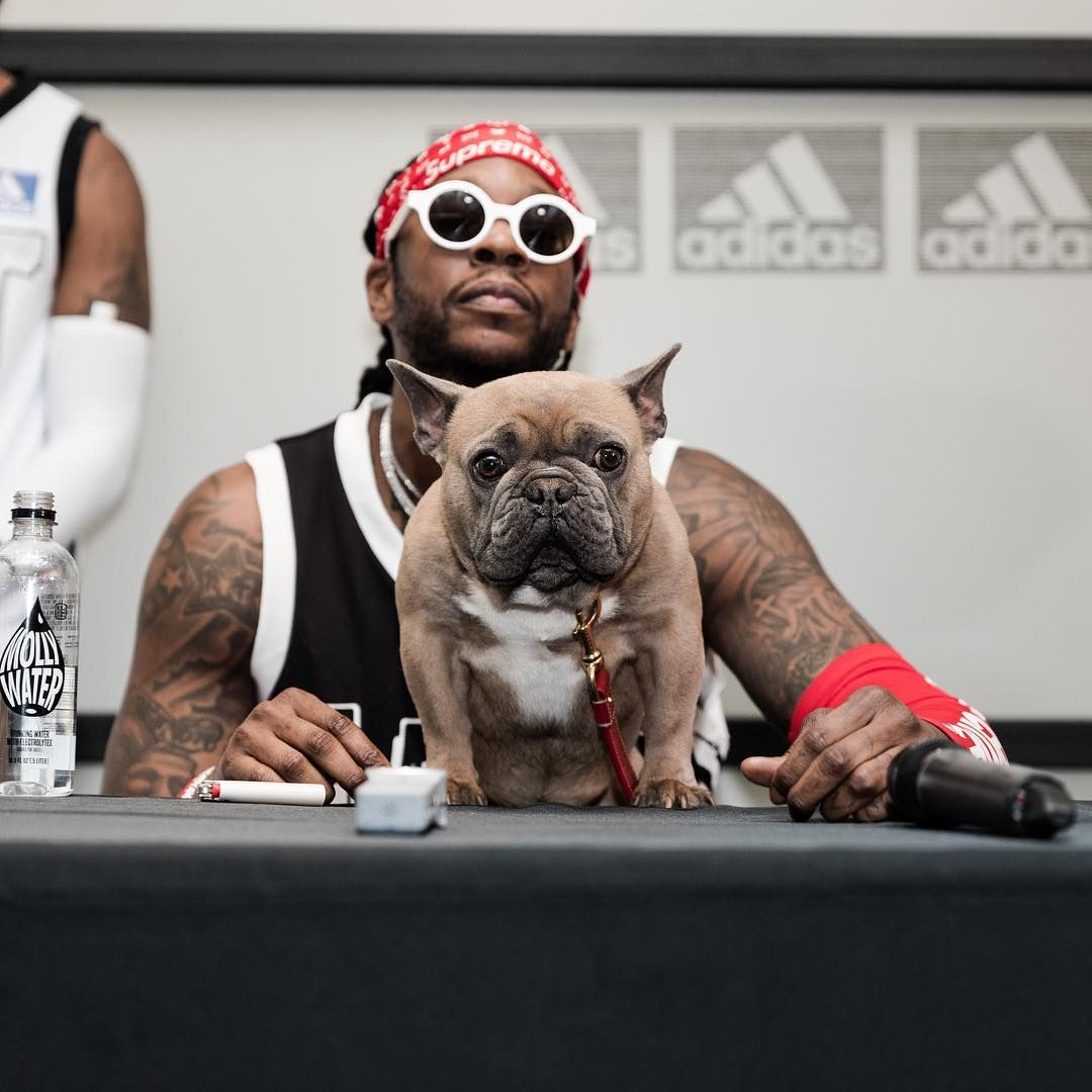 Pictures Of 2 Chainz Dog Trappy