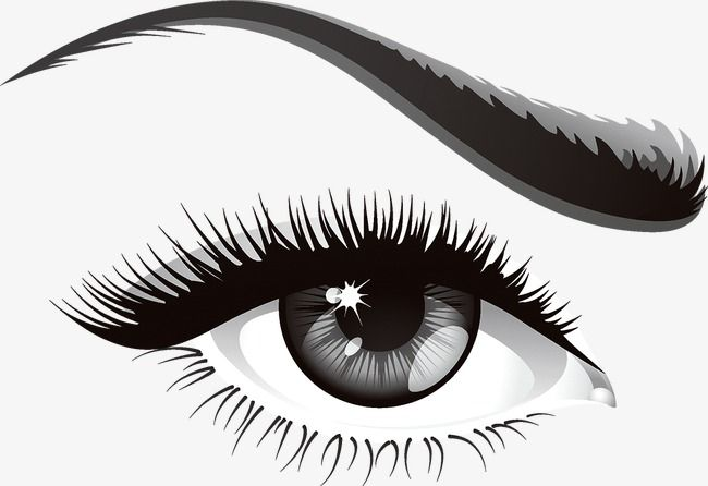 Eye Eyeball Eyelash Png And Vector With Transparent Background