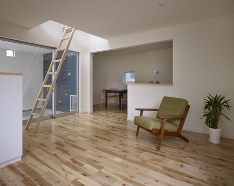 climbing wall and ladder in the house in case you get bored of the stairs.