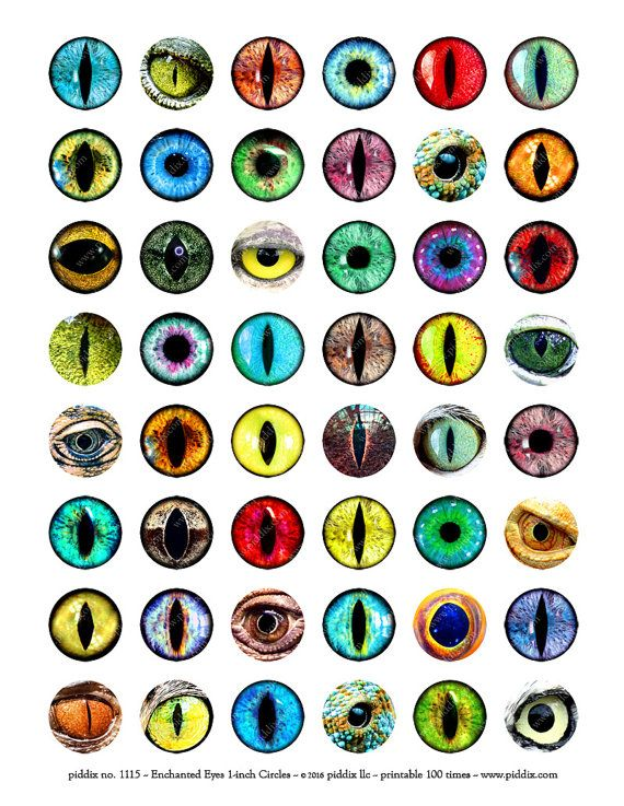 Printable Instant Download Dragons Fairies Enchanted Creature Eyes Snakes Evil Eye 1 inch Circles, piddix 1115
