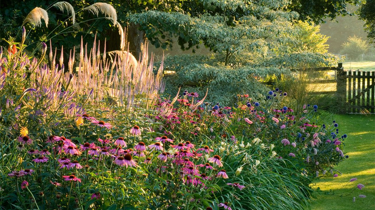 Summer Color for Your Garden (Zones 4 - 7) | Grow ...