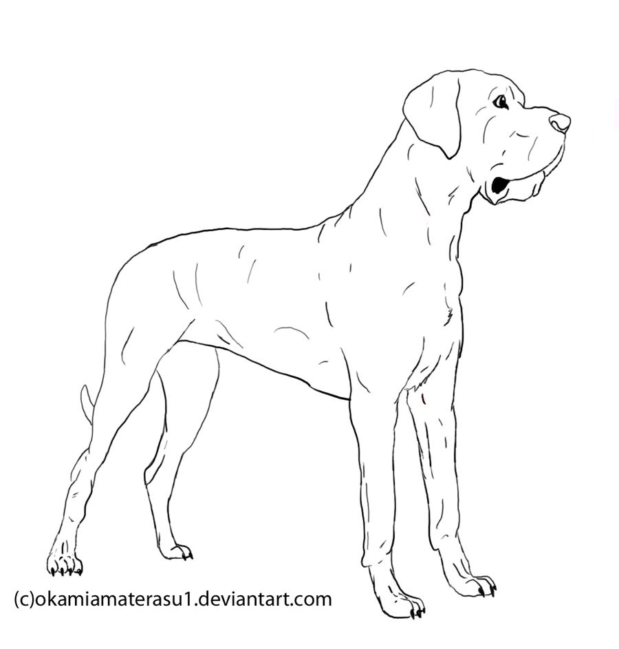 line drawing of great dame dogs great dane lineart free use by