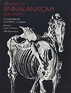 buy a cheap copy of an atlas of animal anatomy for artists book by