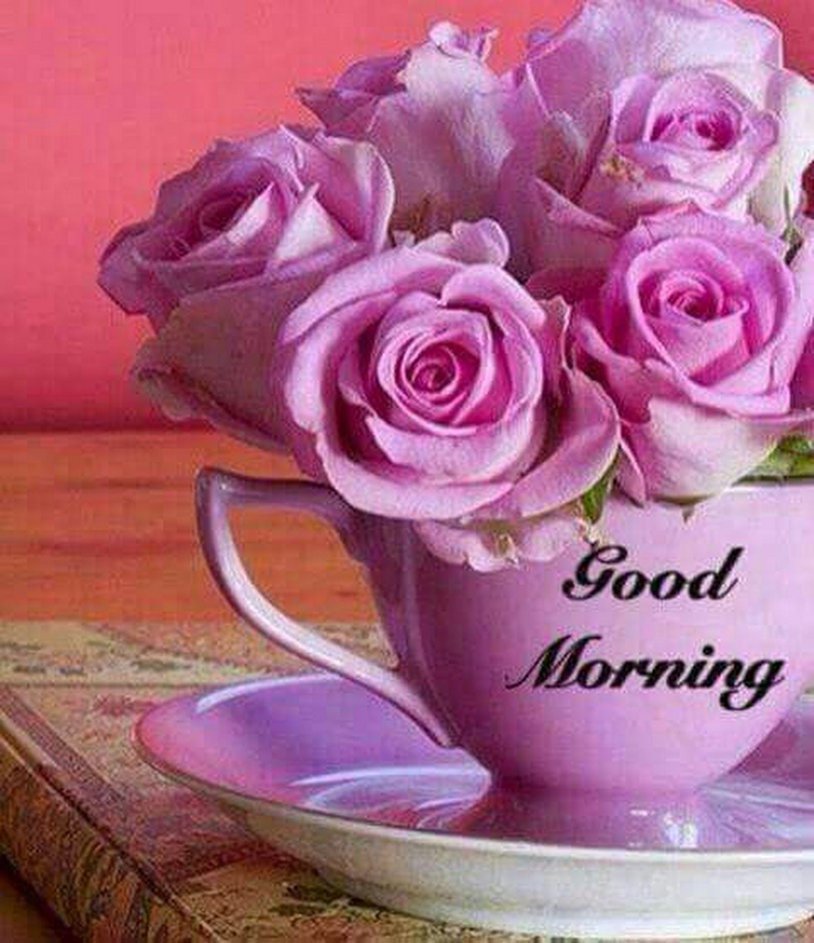 Good morning beautiful friends Have a lovely day Krishna Roy