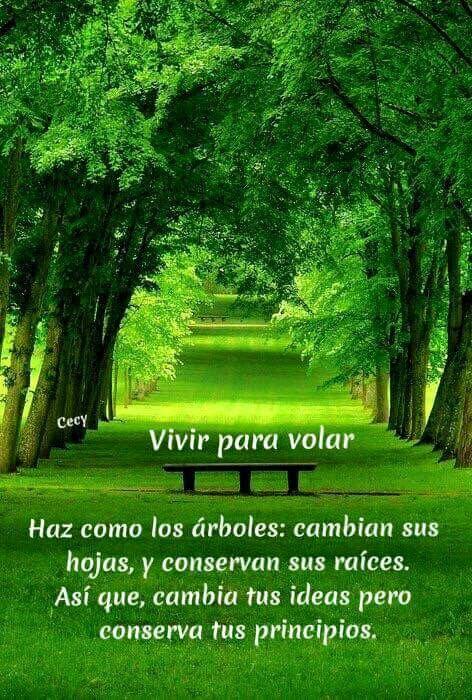 Frases Que Te Naturaleza Paisajes Y Jardines