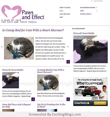 Cat Advice Paws And Effect Click To Visit Site Http 1 33x Us Wzwqcv Cat Advice Pet Advice Paw