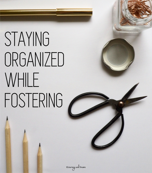 How To Put Together A Foster Care Organization Binder
