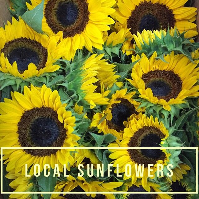 Monday Morning Flowers On Instagram Local Sunflowers Are Here At The Shop Florist Flowers Flowershop Sunfl Morning Flowers Rustic Flowers Flowers