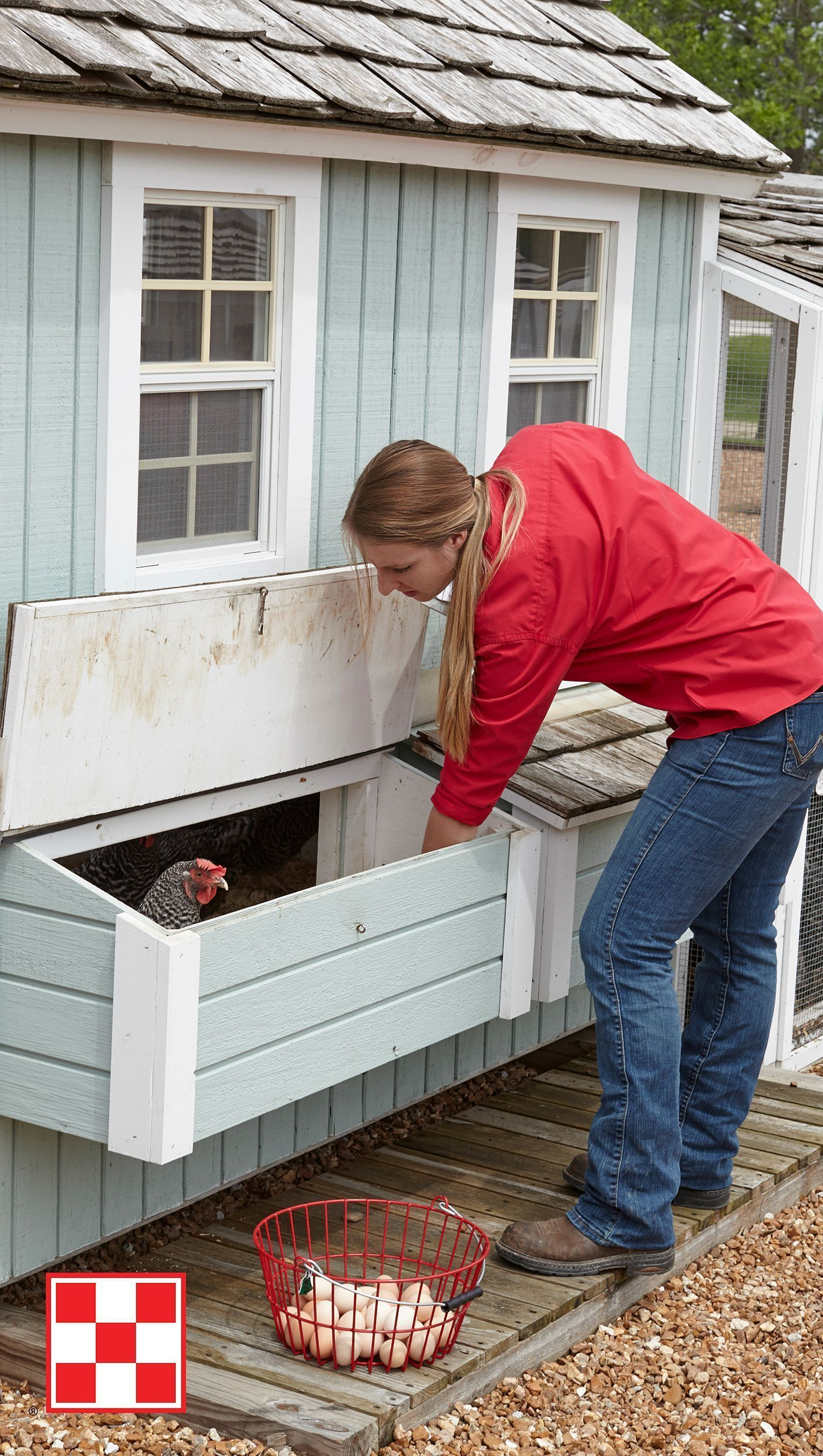 Poule De Decoration Pour Jardin outstanding 75 creative and low-budget diy chicken coop