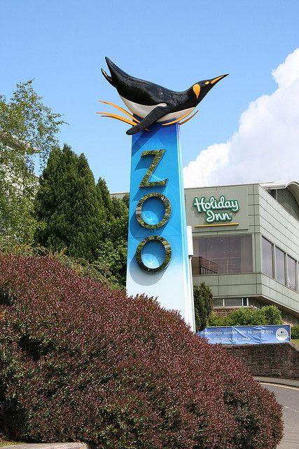 Edinburgh Zoo Sign Edinburgh Zoo Zoo Pet Signs
