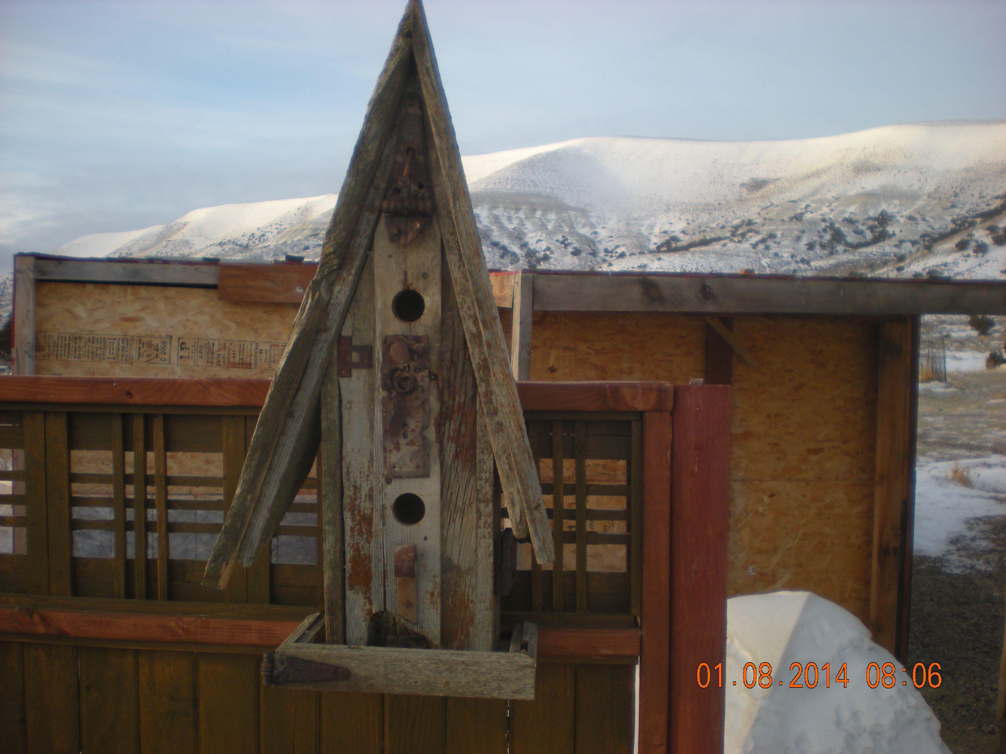 Homes for poor birds