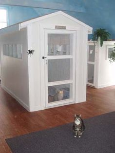 Good Idea For Cage Rest Cats Cat Hotel Cat Room Cat Cages