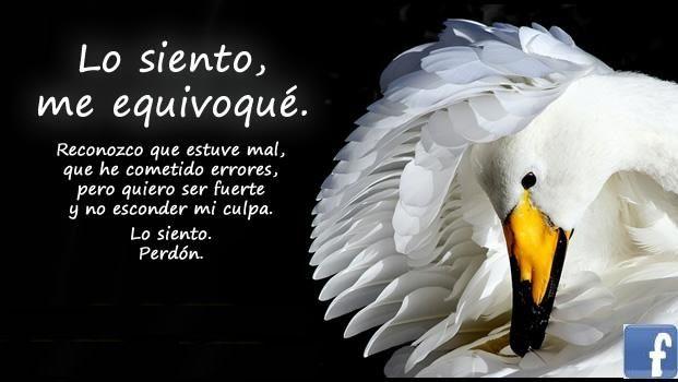 Frases De Amor Frases De Disculpas Amor Amor Perdon Y Me