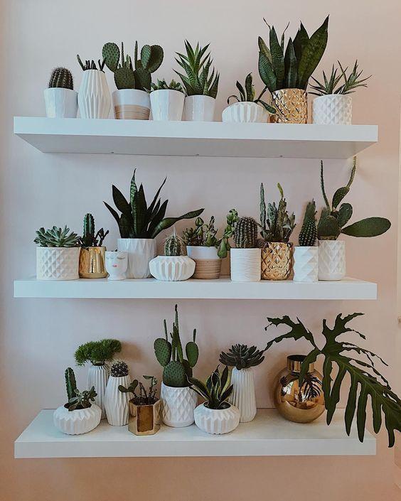 Decoracion De Interiores Con Repisas Y Plantas Uno De Los Combos Favoritos En La Actualidad Para Decorar Bedroom Plants Decor Natural Home Decor Bedroom Plants