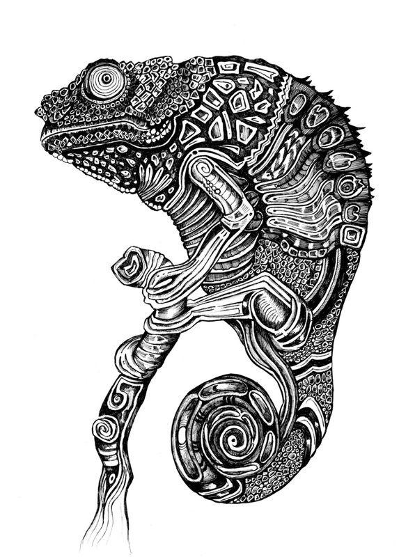 Chameleon Zentangle Tierzeichnung Tierillustrationen Abstrakte Tiere