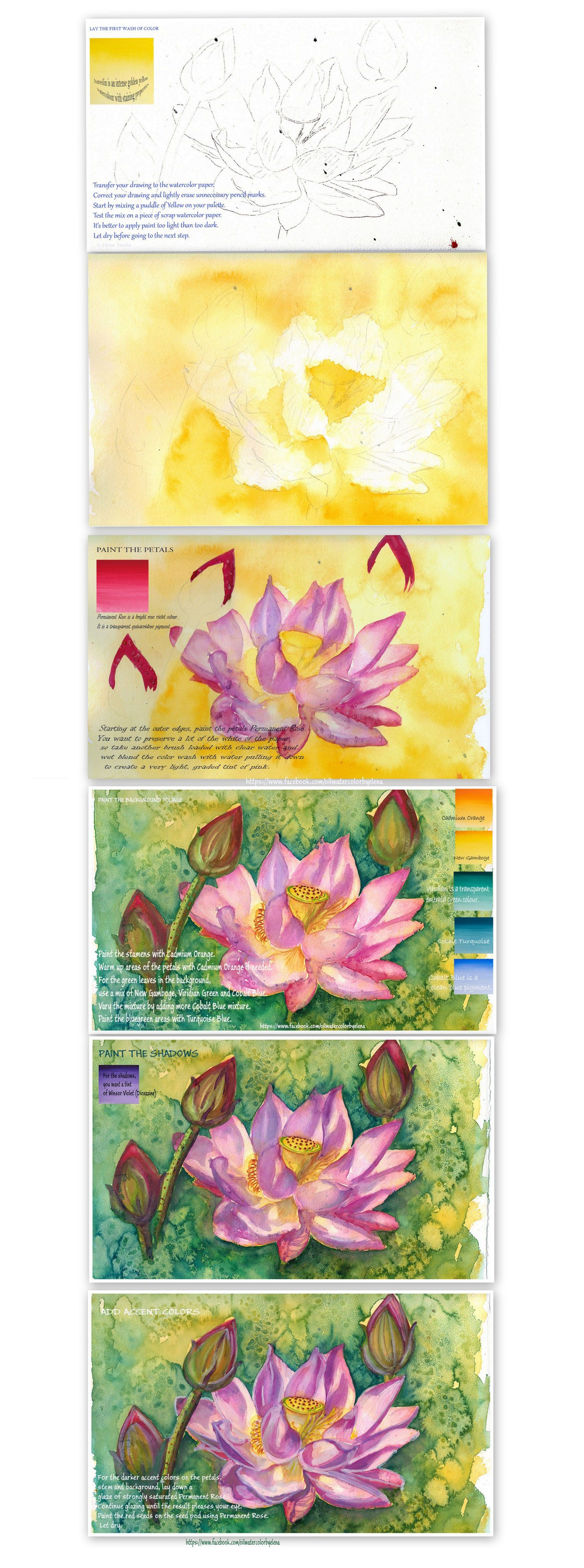 Fancy lotus flower tattoo meaning color vignette coloring page magnificent lotus flower tattoo meaning color photo coloring page izmirmasajfo