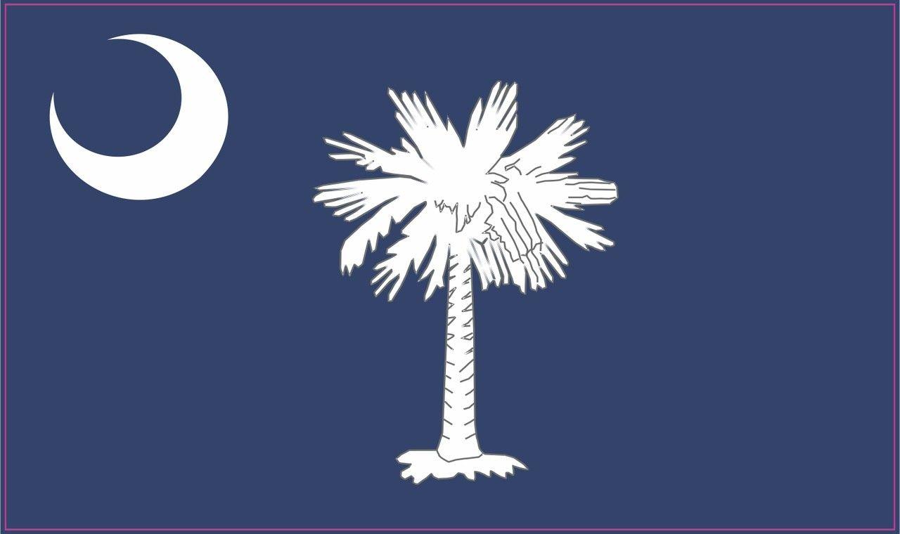 5in X 3in South Carolina State Flag Bumper Sticker Decal Window Stickers Car Decals South Carolina Flag South Carolina State Flag State Flags [ 760 x 1280 Pixel ]