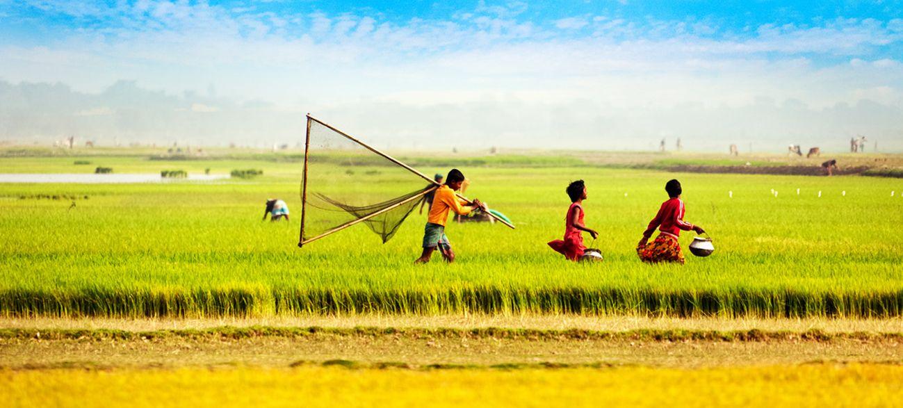 Beautiful Bangladesh Bangladesh বাংলাদেশ Pinterest